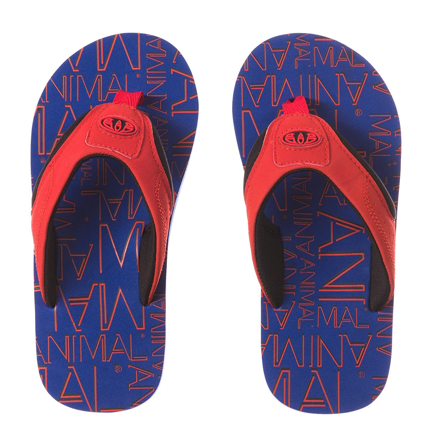 5dc2117d5725 Animal Childrens Boys Jekyl Logo Flip-Flops (12 UK Junior) (Aster Blue)   Buy Online at Low Prices in India - Amazon.in