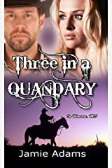 Three in a Quandary (in Warsaw, MO Book 3)