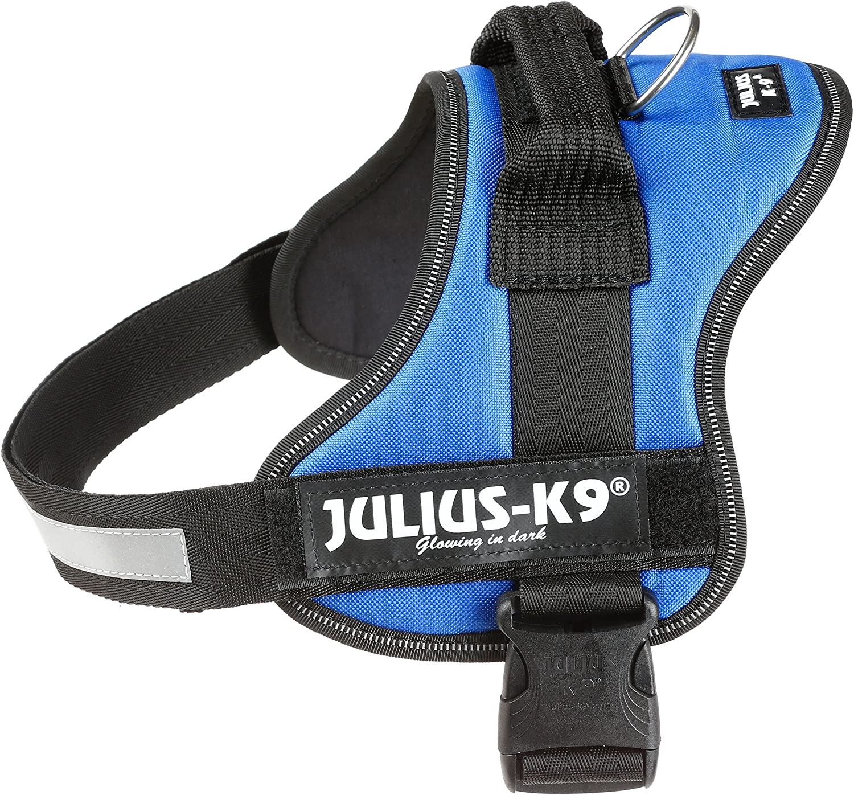 Julius-K9, Talla 0, 58-76 cm, Azul: Amazon.es: Productos para mascotas