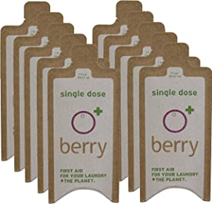 BerryPLUS Soap Berry 1-FL OZ Eco-Friendly Natural Single Load Laundry Detergent 10-Packets