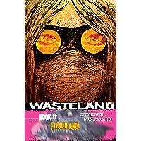 Wasteland Volume 11: Floodland