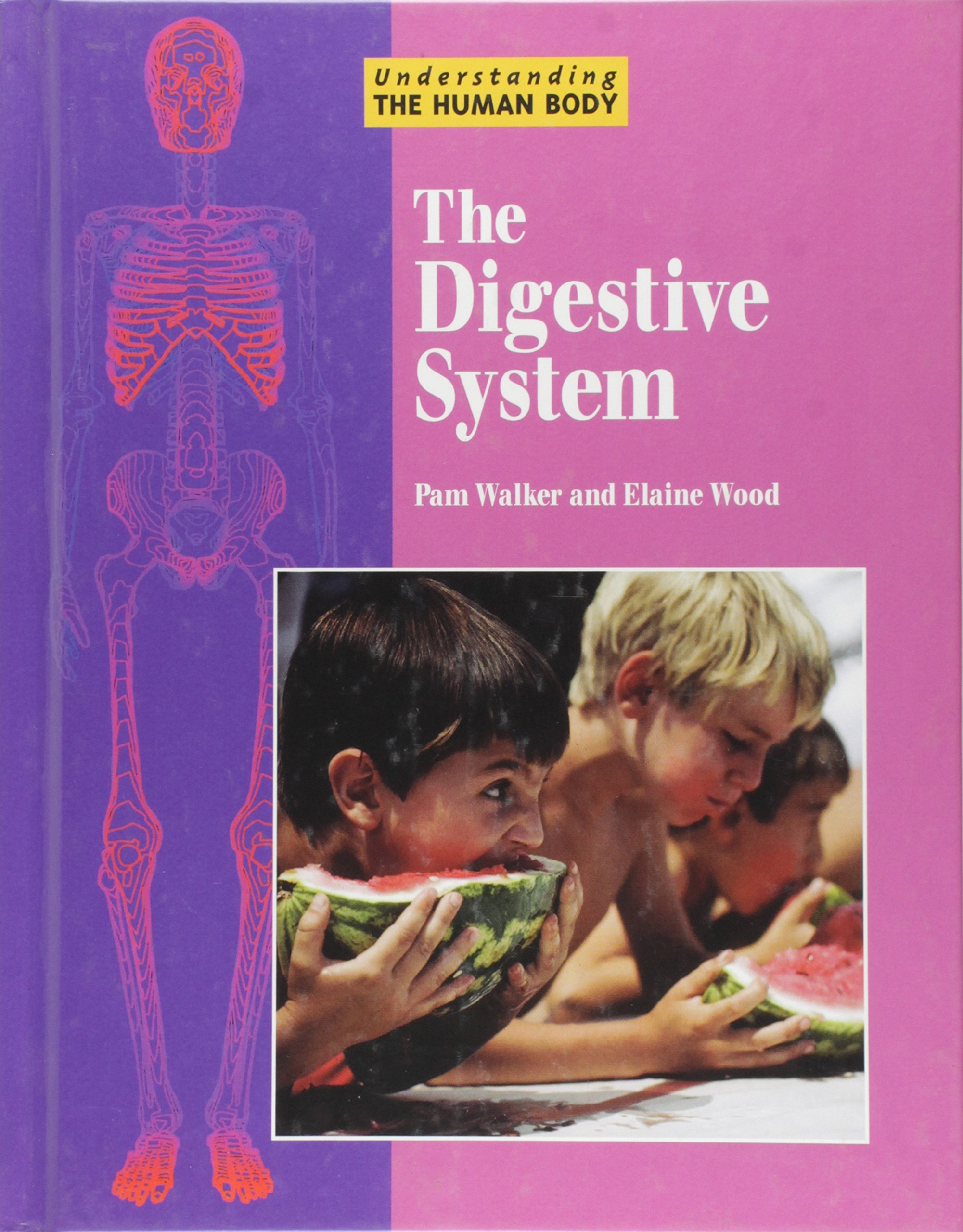 Download Understanding the Human Body - The Digestive System ebook