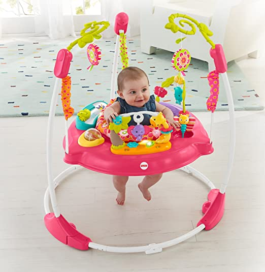 Fisher-Price Pink Petals Jumperoo  by Fisher-Price - My Mom's Best
