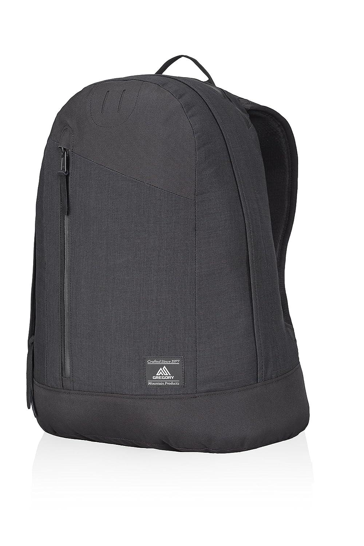 201ecf0b5a2e Amazon.com : Gregory Mountain Products Workman Daypack, Ebony Black ...