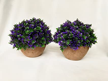 Amazon 2 pack artificial potted purple clover 5 tall x 5 2 pack artificial potted purple clover 5 tall x 5 mightylinksfo