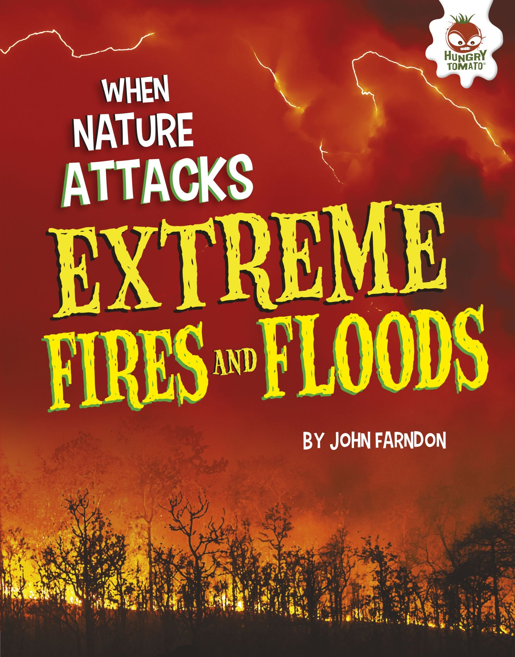 Download Extreme Fires and Floods (When Nature Attacks) pdf epub