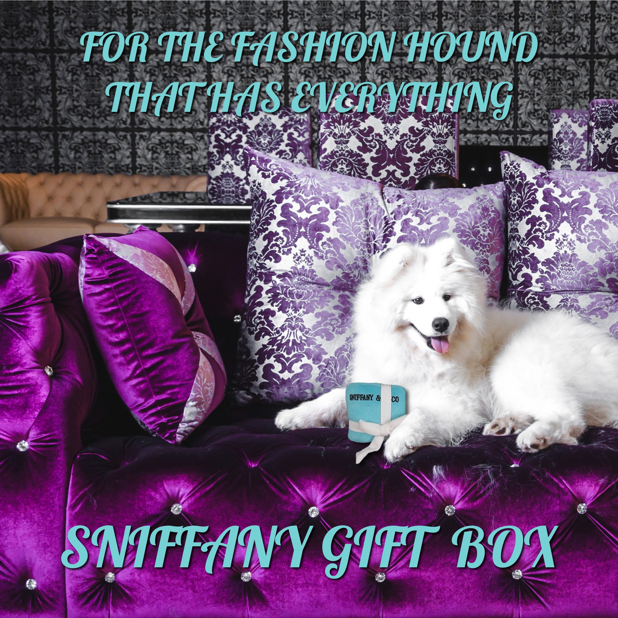 Sniffany and Co Plush Dog Parody GiftBox Toy w/ Squeaker - Small by Dog Diggin Designs by Dog Diggin Designs (Image #3)