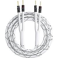 GearIT 10 AWG Speaker Wire with Banana Plugs (1 Pack, 10 Feet), 10Ga Banana Wire for Bi-Wire Bi-Amp HiFi Surround Sound…