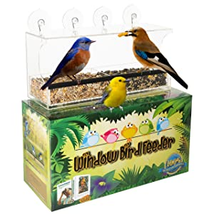 Entirely Zen Window Bird Feeder - Squirrel Feeder - Super Strong Suction Cups Stay Put + Perch & Large Bird Seed Tray - Bird House Bird Feeders for Outside - Great Gift for Kids Seniors & Indoor Cats