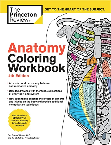 - Anatomy Coloring Workbook, 4th Edition: An Easier And Better Way To Learn  Anatomy: 9780451487872: Medicine & Health Science Books @ Amazon.com
