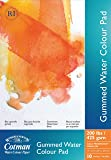 Winsor & Newton Cotman 200-Pound Water Colour Cold Press Gummed Paper Pad, 10 by 14-Inch