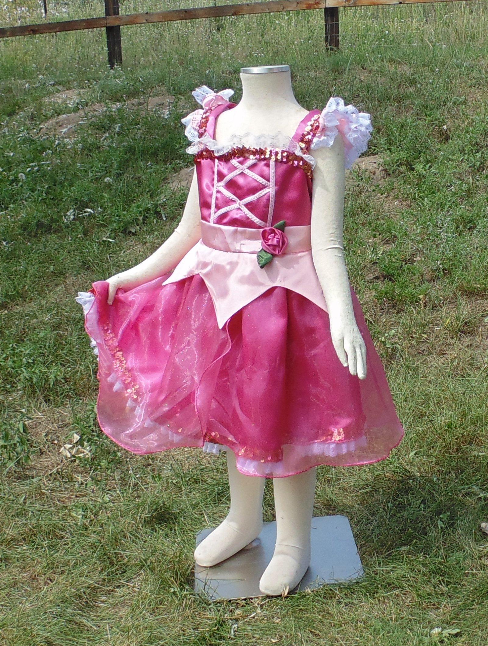 Girls 4-5 Pink Sleeping Beauty dress up apron