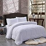 Unique Home All Season Alternative Goose Down Comforter Plush Fiberfill Duvet Insert, King
