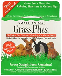 cat-about por miraclecorp Gimborn único gato hierba Plus, 60-gram Gimborn Pet Specialties 418777