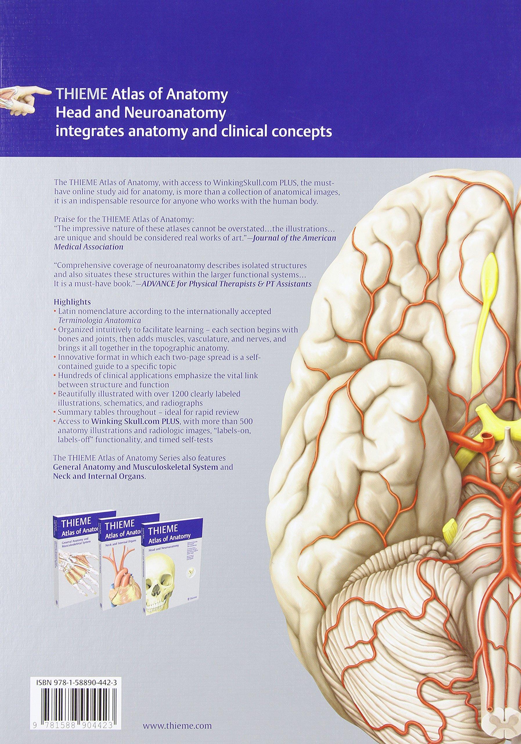 Head and Neuroanatomy - Latin Nomencl. (THIEME Atlas of Anatomy ...