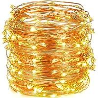 2-Pack Oak Leaf 30 Super Bright LED Rope and String Light