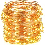 Oak Leaf 30 Super Bright LED Rope and String Light, 9.8 Feet, Warm White, 2-Set