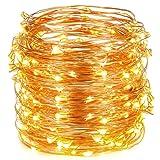 Oak Leaf 30 Super Bright LED Rope and String Light, 9.8 Feet, Warm White, 2-Set
