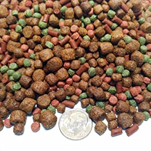 Aquatic Foods Inc. Gourmet Blend - Floating & Sinking Large Mix for Pacus, Arowanas, Oscars All Large Fish GB-410