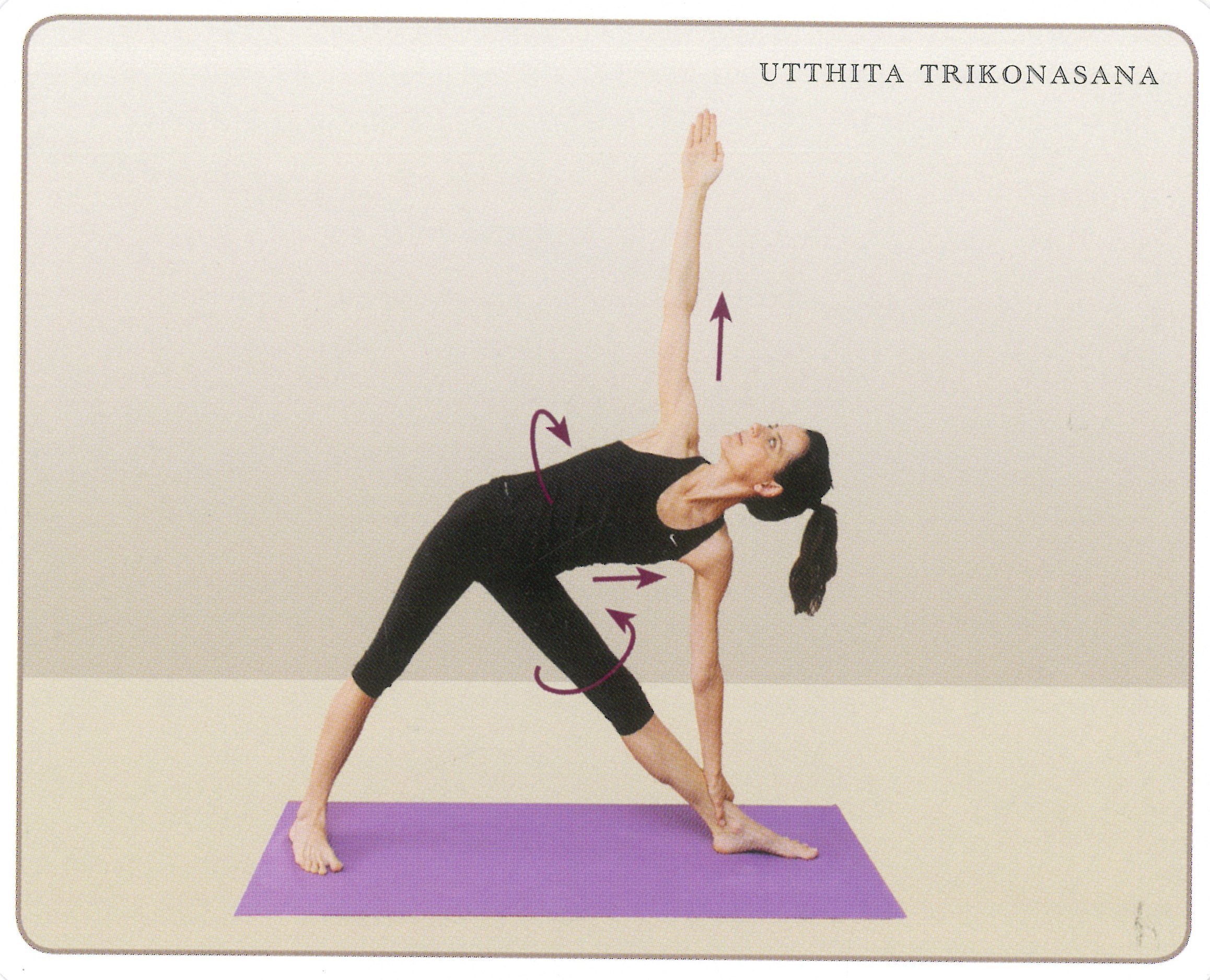 Amazon.com: New Yoga Flash Cards - Asana Instruction ...