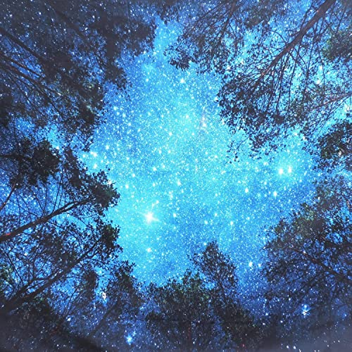 Forest Starry Tapestry Starry Sky Tapestry Moon and Stars Tapestry Galaxy Tapestry Wall Hanging Forest Tapestry Night Sky Tapestry Wall Tapestry for Dorm Living Room Bedroom X – Large, 4 forest Star