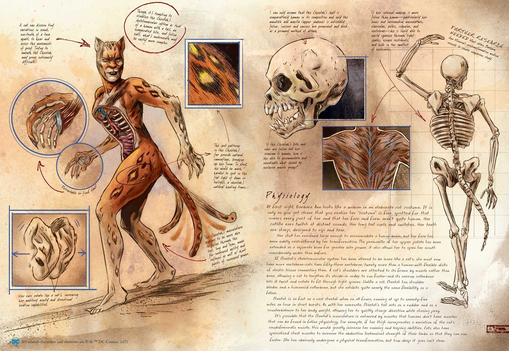 Dc Comics Anatomy Of A Metahuman Amazon S D Perry Books