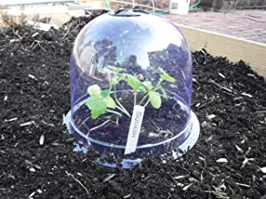 "6-Pack! GrowAway Medium Reusable Plastic Mini Greenhouse, Garden Cloche Dome, Plant Covers Frost Guard Freeze Protection for Plants Outdoors, Garden Tools, Garden Accessories - 10.24"" Diam. x 7.48"" H"