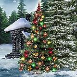 Hidden Garden Christmas