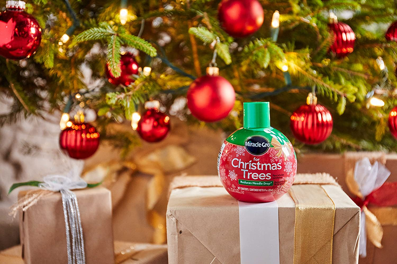 Miracle Gro For Christmas Trees