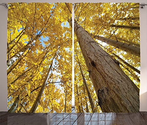 Forest Home Decor Curtains Up View of Fall Aspen Tree Leaves