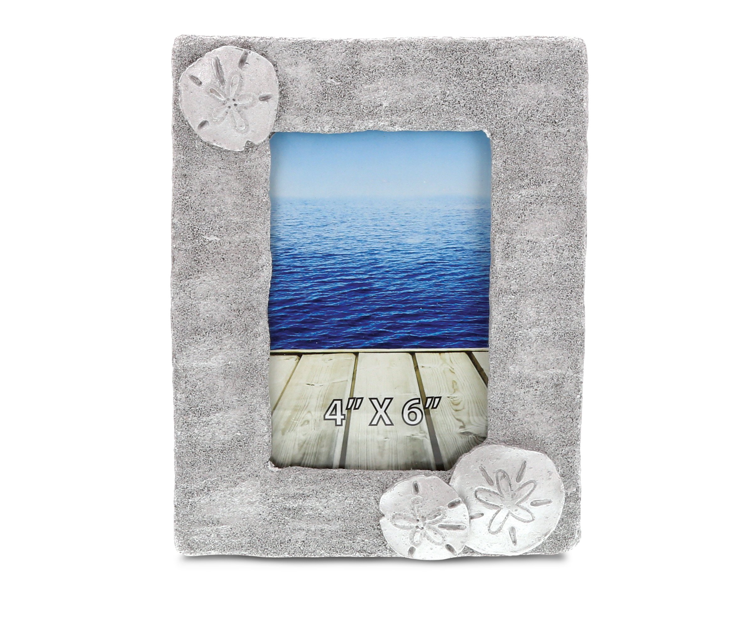 CoTa Global Silver Sand Dollar Photo Frame 4''x6'' Nautical Handcrafted Resin Picture Holder Aquatic Sea Biscuits Animal Ocean Life Memories Cute & Simple Frame Bright & Unique for Marine Themed Rooms