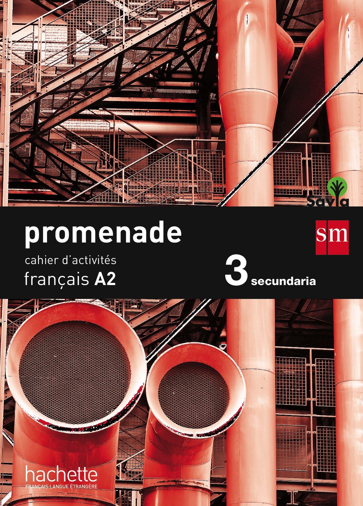 Read Online PROMENADE 3ºESO CAHIER A2 15 SMFR33ESO PDF