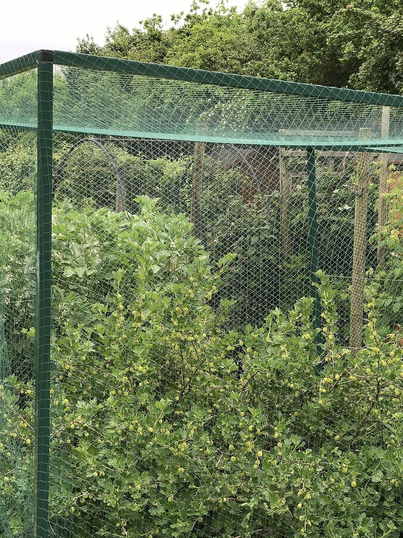Nutleys Kitchen Gardens FLE09BN10 Filet anti-oiseaux tiss/é Vert 10 x 8/m