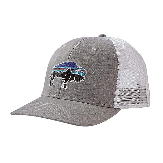 Amazon.com  Patagonia Fitz Roy Bison Trucker Hat (Drifter Grey ... 9c9c46cdaa4a