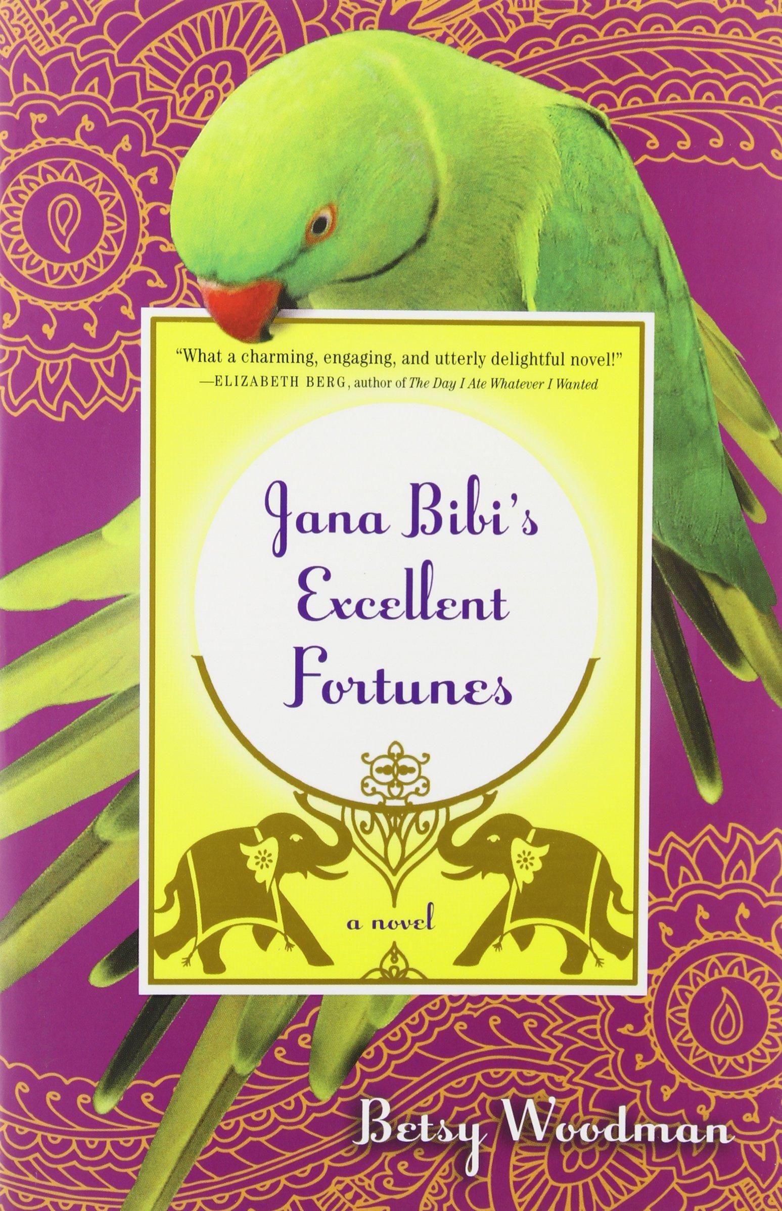 Read Online Jana Bibi's Excellent Fortunes: A Novel pdf