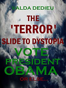 """Why Re-Elect President Obama? The """"Terror"""" Slide to Dystopia (Practical Politics Book 1)"""