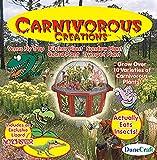 DuneCraft Carnivorous Creations Dome Terrarium