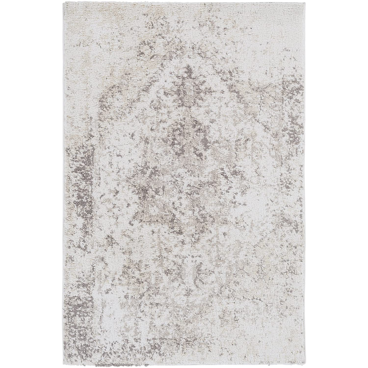 Ashleigh Medium Gray Updated Traditional Area Rug 2' x 3'