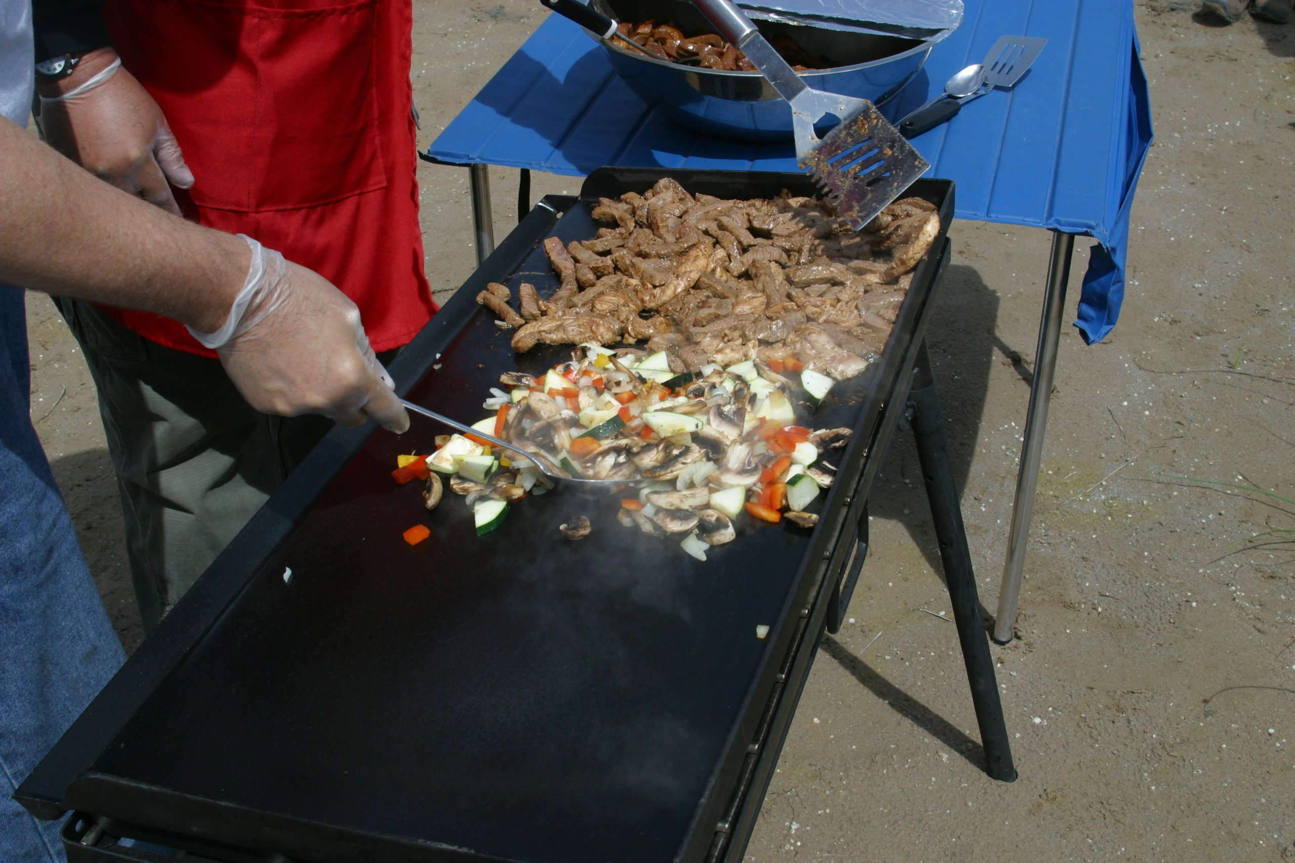 Camp Chef Professional 16'' x 37'' Fry Griddle by Camp Chef