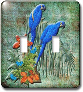 3dRose lsp_108107_2 Bird Art with Pretty Parrots and Flowers on Green Background Light Switch Cover