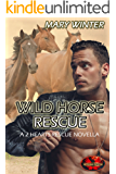 Wild Horse Rescue: Brotherhood Protectors World