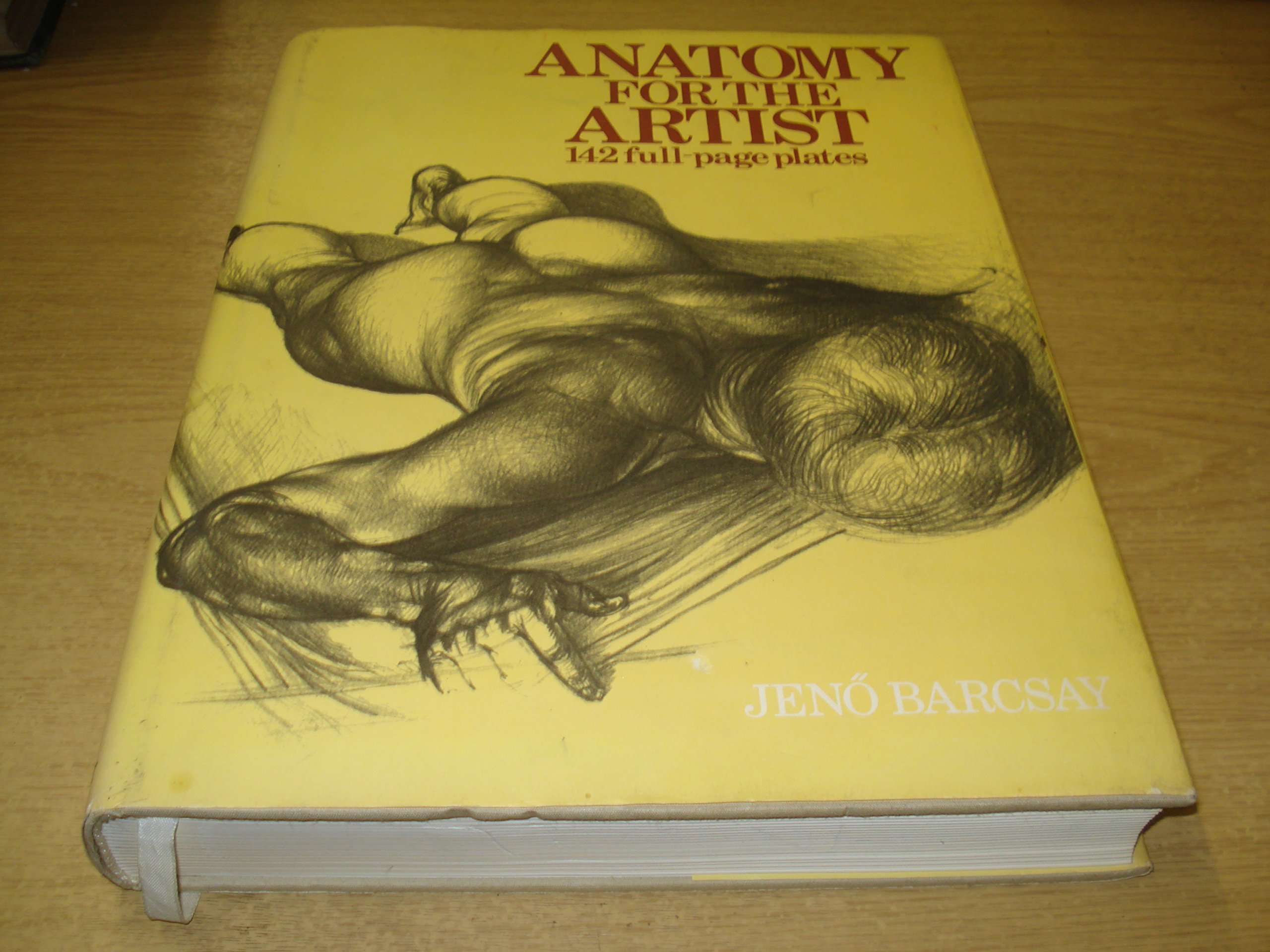 Anatomy for the Artist: Jeno Barcsay: 9780748102648: Amazon.com: Books