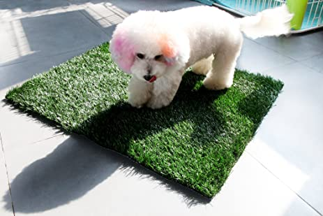GOLDEN MOON Pet Grass Mat Series PE Artificial Turf Antibacterial Pet Potty  Trainer Indoor Outdoor Replacement