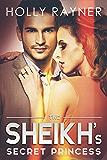 The Sheikh's Secret Princess (The Sheikh's Every Wish Book 2)