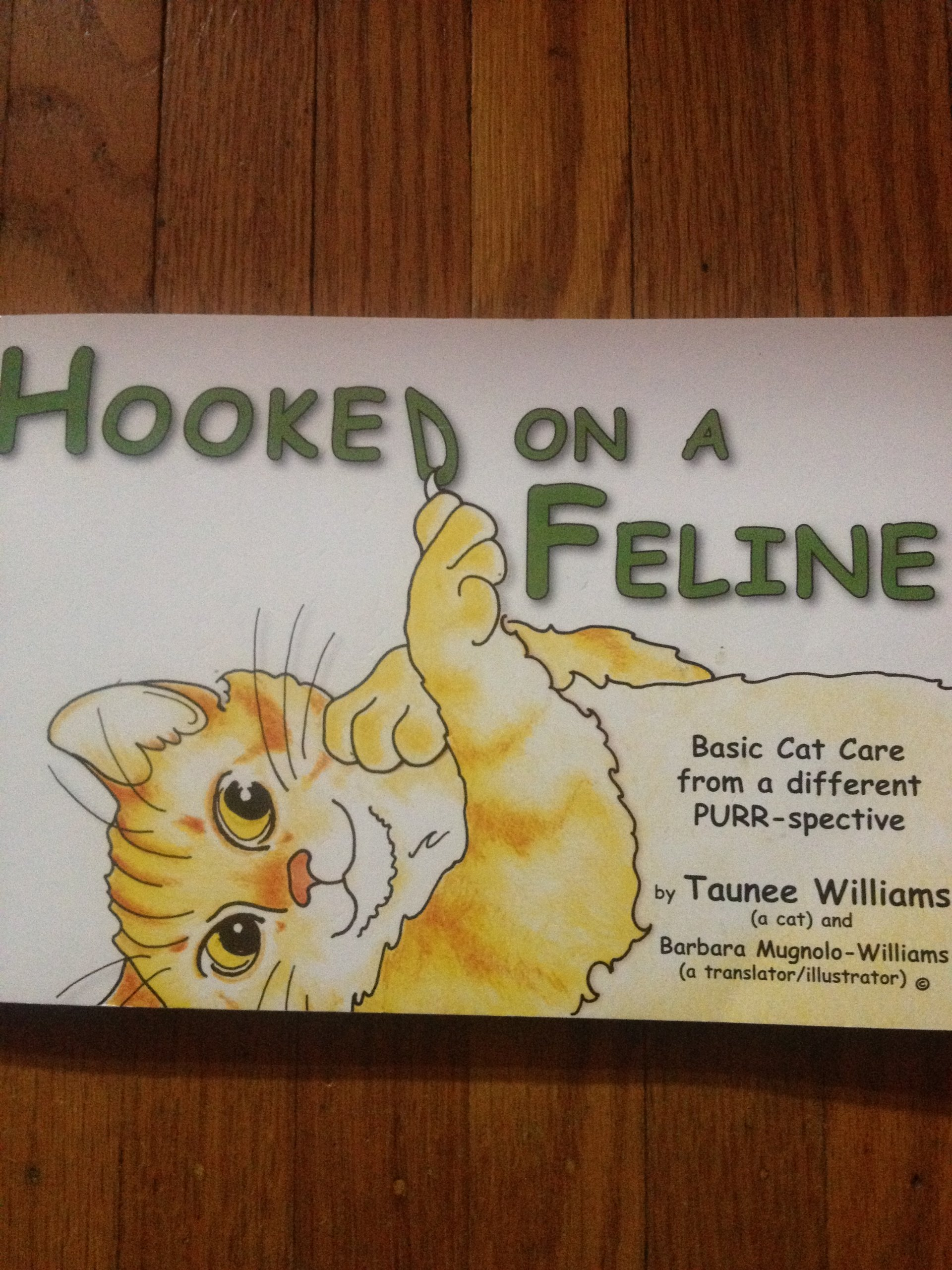 Hooked on a Feline; Basic Cat Care from a different Purr-Spective