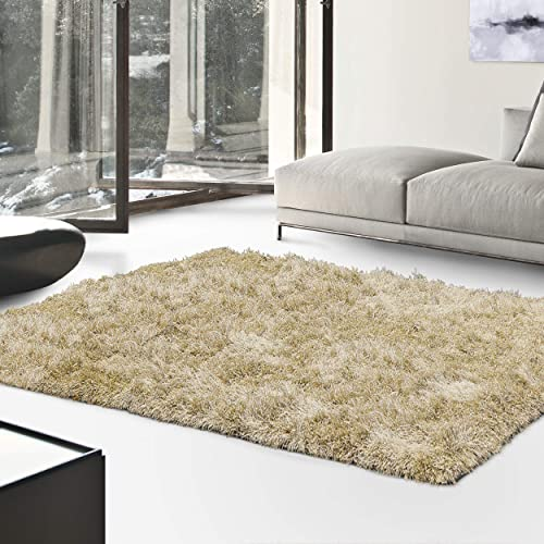 Superior Textured Shag Area Rug 4 x 6 Beige