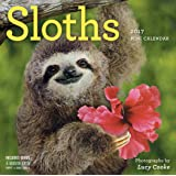 Sloths Mini Wall Calendar 2017