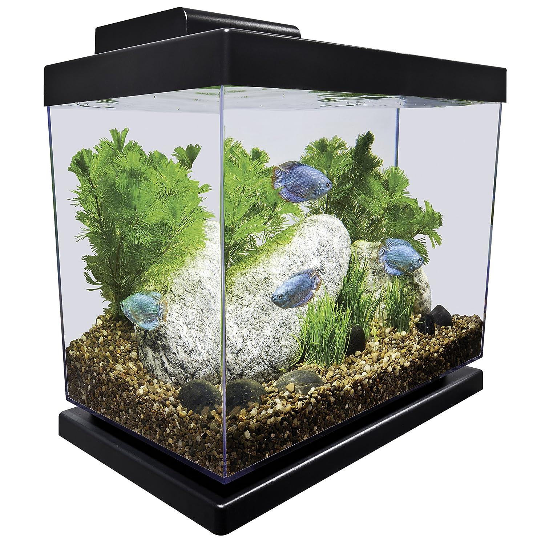 Amazon Marineland Classic Aquarium Kit 4 Gallon Aquarium