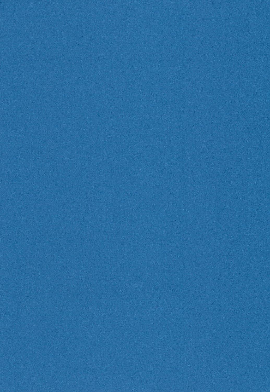 Einlegebl/ätter f/ür Alben m/ögliche Verwendung: Einladungen Bastelarbeiten und vieles mehr Hochzeitskarten komplett durchgef/ärbt 100 Blatt DIN A4 Papier matt blau 90g//m/² von papierfant Fotoalbum