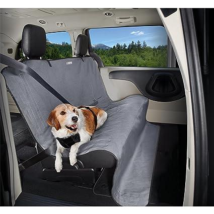 dog car accessory